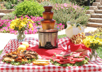 bbq fountain Barbecue Sauce